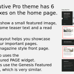 Executive Pro theme uses the Featured Page widget to display 6 teaser boxes on the home page