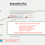 Upload your image logo to Executive Pro theme (260 x 100 pixels)