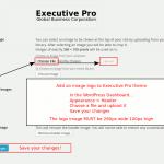 Upload your image logo to Executive Pro theme (260 x 100 pixels)