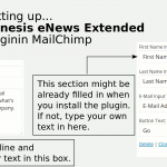 These are some of the text boxes you have to fill out in the Genesis eNews Extended widget.