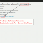 Activate the Generate theme not the Genesis Framework