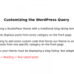 Customizing the WordPress query