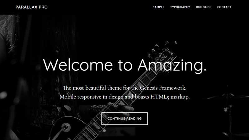 Parallax Pro theme from StudioPress