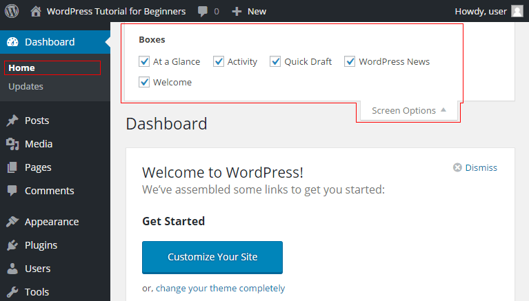 WordPress Screen Options for the Dashboard
