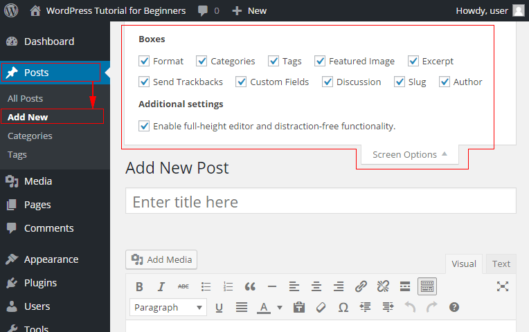 WordPress Screen Options for the post editor