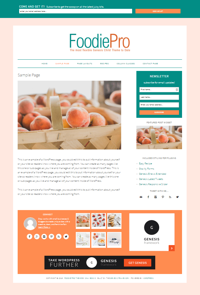 Customizing Foodie Pro Theme