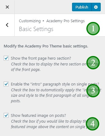 The Academy Pro basic settings tab
