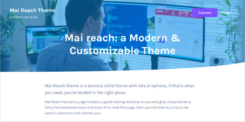 Mai Reach Theme header screenshot.