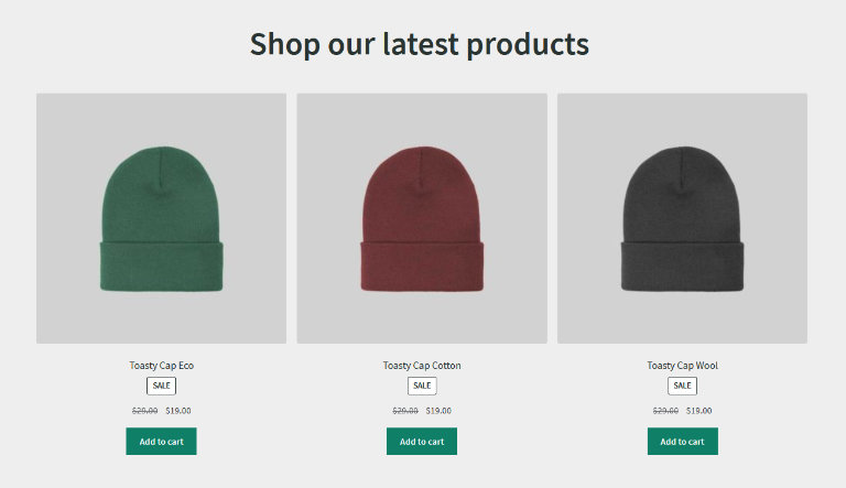 WooCommerce hosting from WP Engine with Elasticsearch helps your customers find the products they need.